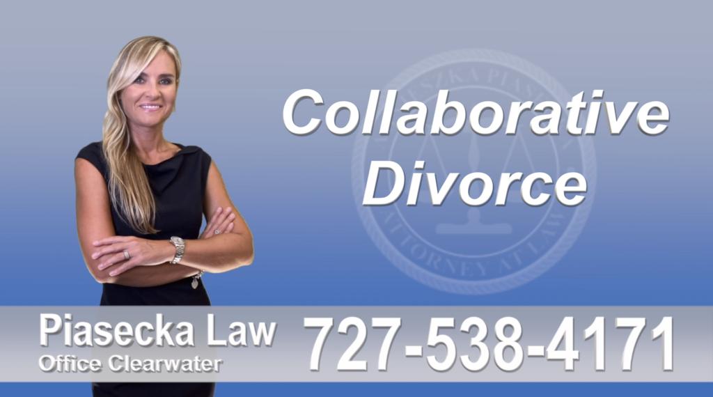 Divorce Immigration Attorney Lawyer Largo collaborative-divorce-attorney-agnieszka-piasecka-prawnik-rozwodowy-rozwod-adwokat-najlepszy-best
