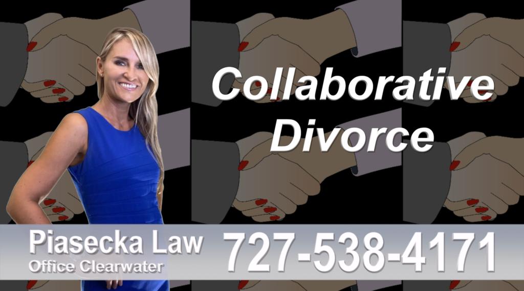 Largo Divorce Immigration Attorney Lawyer collaborative-divorce-attorney-agnieszka-piasecka-prawnik-rozwodowy-rozwod-adwokat-rozwodowy-najlepszy-best