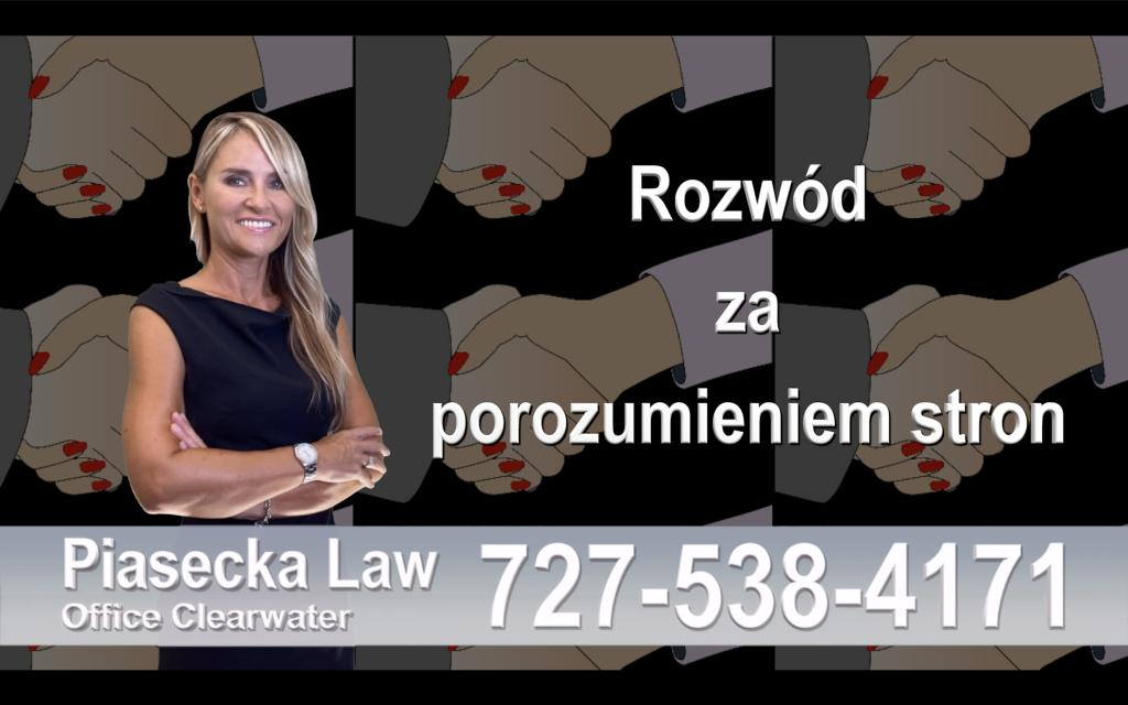 Jak wygląda sprawa opieki nad dziećmi po rozwodzie? Polski Adwokat - Largo, FL